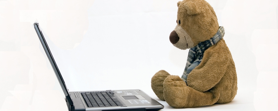 The Tech Bear